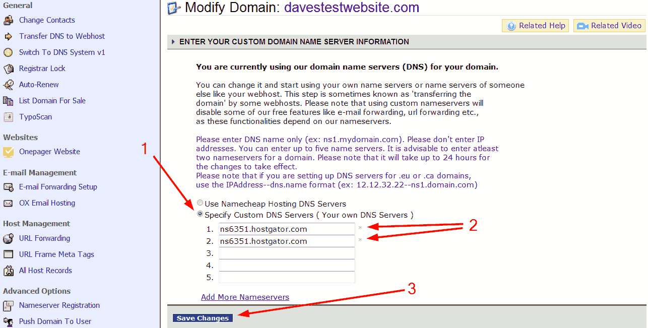 Namecheap enter custom DNS servers.