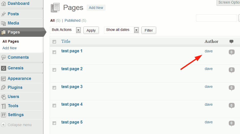 WordPress pages menu.